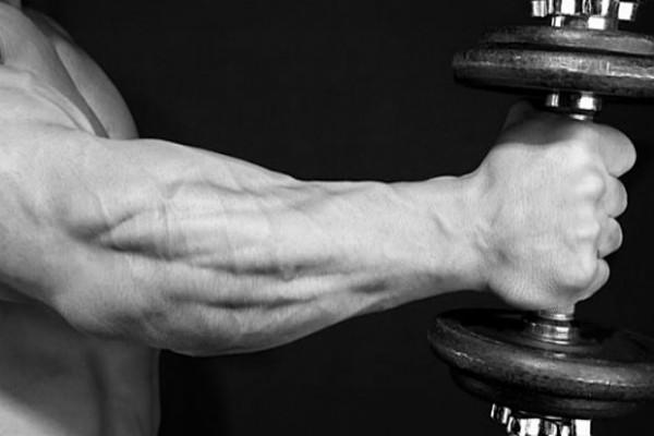1568445906_Freaky-Forearm-Training