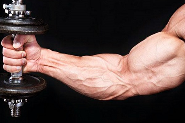 The-Best-Biceps-Exercises-Youre-Not-Doing