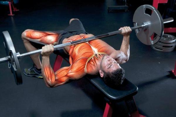Начини на кои можете да го засилите растот на мускулите